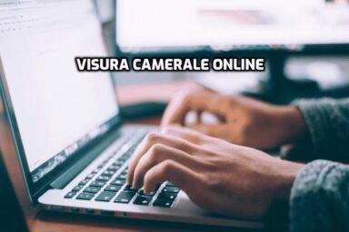 Visura Camerale Online Digitale