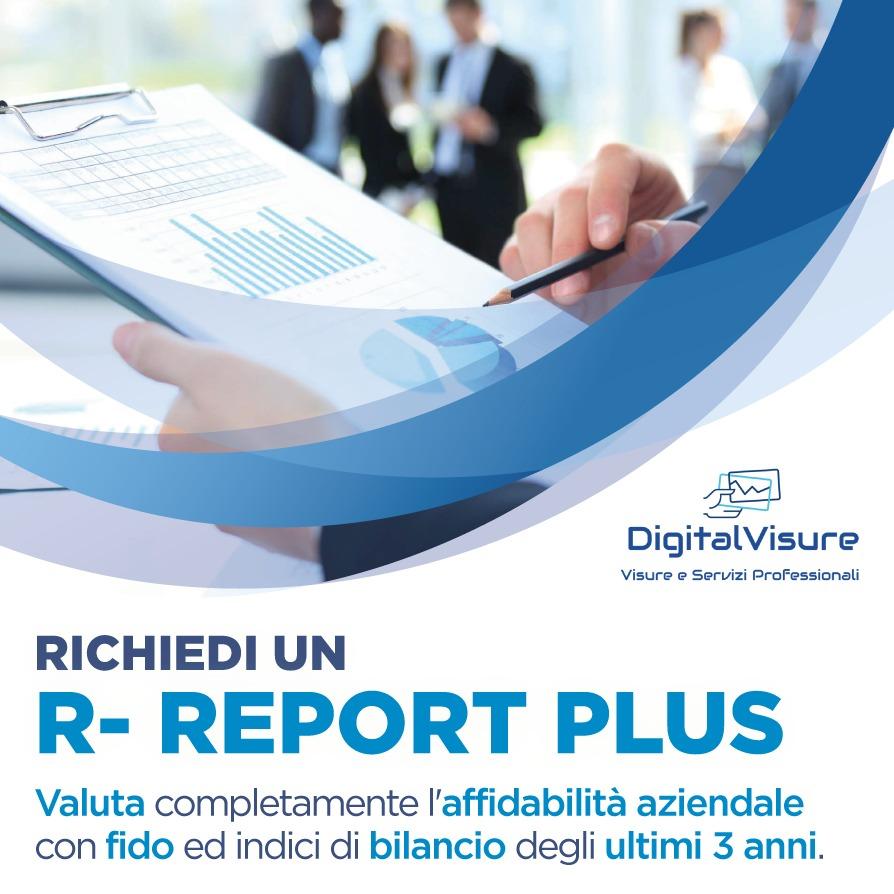 Report Plus Affidabilità aziendale Digital Visure